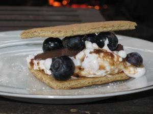 Blueberry Smore